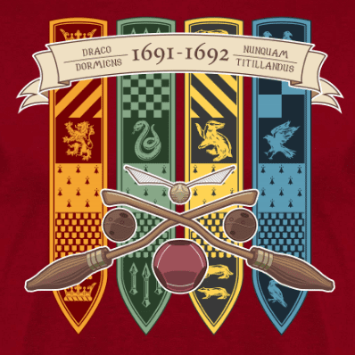 escudo 1691-1692-SCHOOL-YEAR- camiseta en clothes and games terrassa